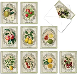 The Best Card Company - 10 Blank Food Note Cards Boxed (4 x 5.12 Inch) - All Occasion Assortment, Bulk Set - French Fruit M4190OCB-B1x10