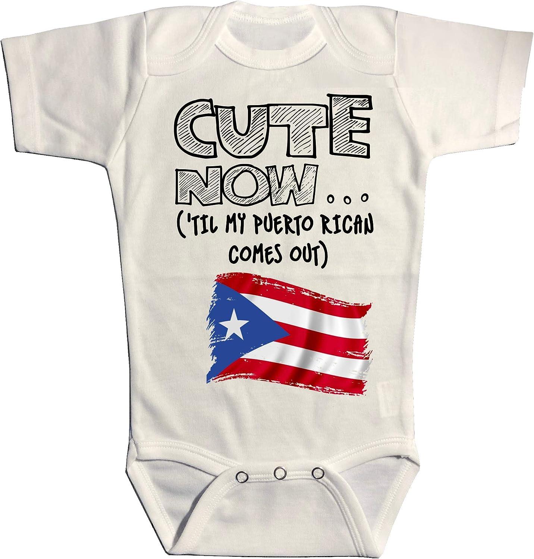Puerto Rico Flag Baby Toddler Infant Bodysuit