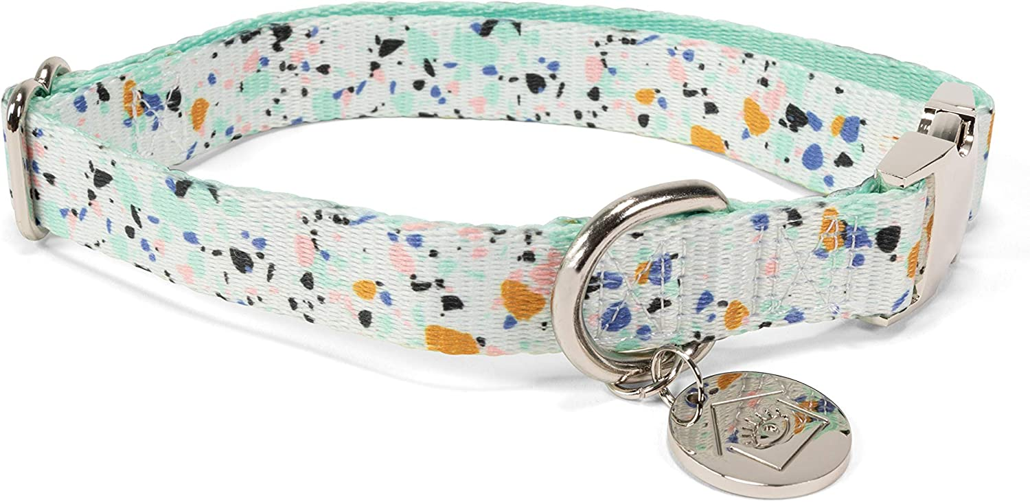 Now House for Pets by Jonathan Adler Green Chroma Collar, Large | Stylish and Fashionable Way to Keep Your Dog Looking Great | Cute and Adorable Dog Accessories for Pets, Chromatic