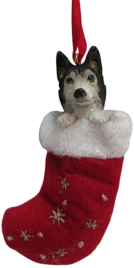 Amazon.com : Siberian Husky Christmas Stocking Ornament with ...