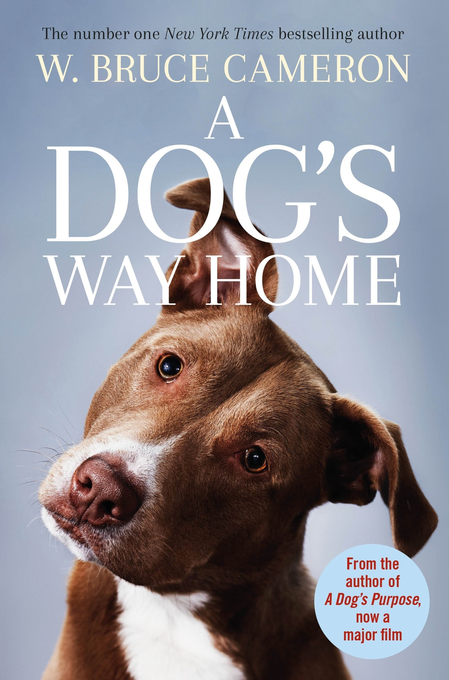 Buy A Dog S Way Home The Heartwarming Story Of The Special Bond Between Man And Dog Book Online At Low Prices In India A Dog S Way Home The Heartwarming Story Of