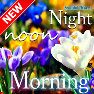 Amazoncom Good Morning Good Night Beautiful Flower Appstore For