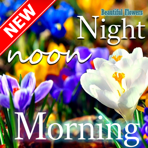 Amazon Com Good Morning Good Night Beautiful Flower Appstore For Android