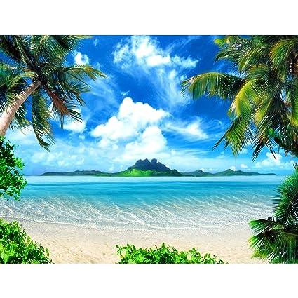 Sfondo Fotografico Palme Da Mare Spiaggia 352 X 250 Cm Lana Sfondo