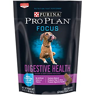Purina Pro Plan FOCUS Digestive Health with Real Chicken Soft Chews Dry Dog Snacks - (1) 16 oz. Pouch