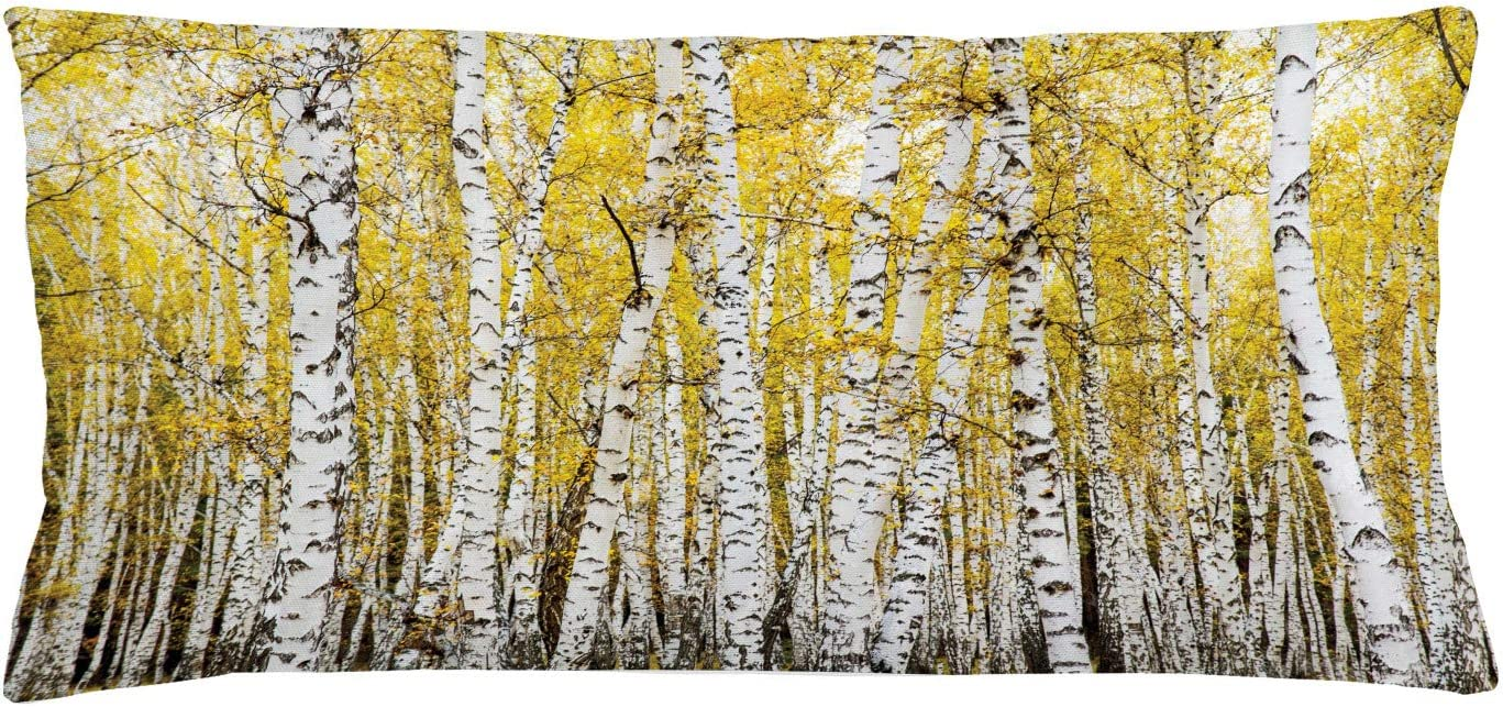 "Ambesonne Forest Throw Pillow Cushion Cover, Autumn Birch Forest Golden Yellow Leaves Woodland October Seasonal Nature Picture, Decorative Rectangle Accent Pillow Case, 36"" X 16"", Grey Yellow"