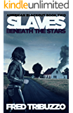 Slaves Beneath the Stars: American Blackout Book Two