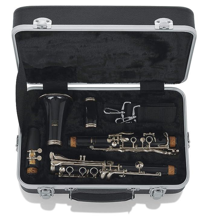 Amazon.com: Gatos Alto Estuche para saxofón (GC-ALTO ...