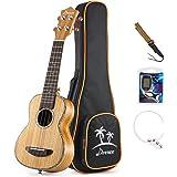 Donner Zebrawood Ukulele Soprano DUS-2 21 inch Ukulele Kit with Case Tuner Strap Nylon String