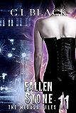 The Medusa Files, Case 11: Fallen Stone