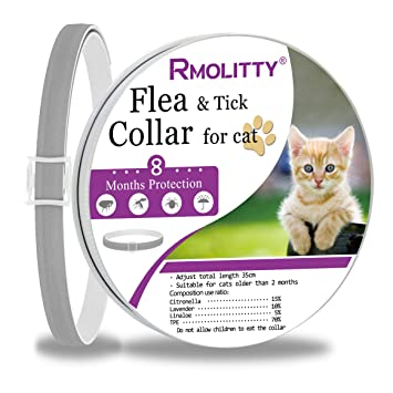 Rmolitty Collar Antiparasitario Gato Collar para garrapatas, 8 Meses de Protección para Gato (8 Meses de protección): Amazon.es: Productos para mascotas