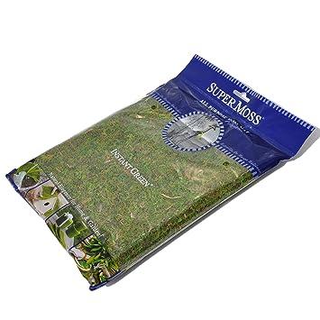 Miniature Fairy Garden Moss Mat