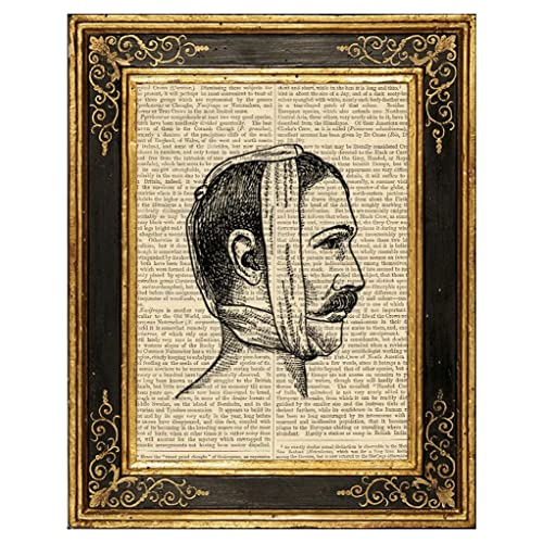 great for crafting aged book pages antique medical book pages with an aged patina antique medical photos medical illustrations