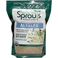 Nature Jims Alfalfa Sprout Seeds – 16 Oz Organic Sprouting Seeds – Non-GMO Premium Alfalfa Seeds – Resealable Bag for…