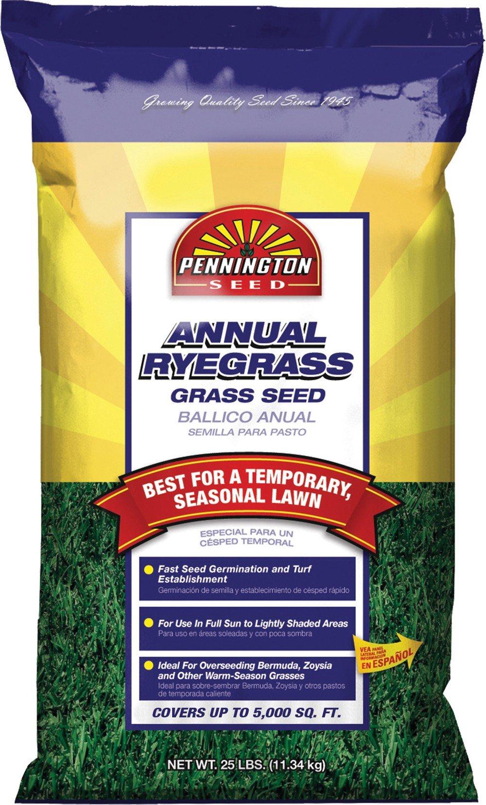 Pennington Annual Ryegrass Retail Bag to Overseed Warm Season Grasses, 25 lb