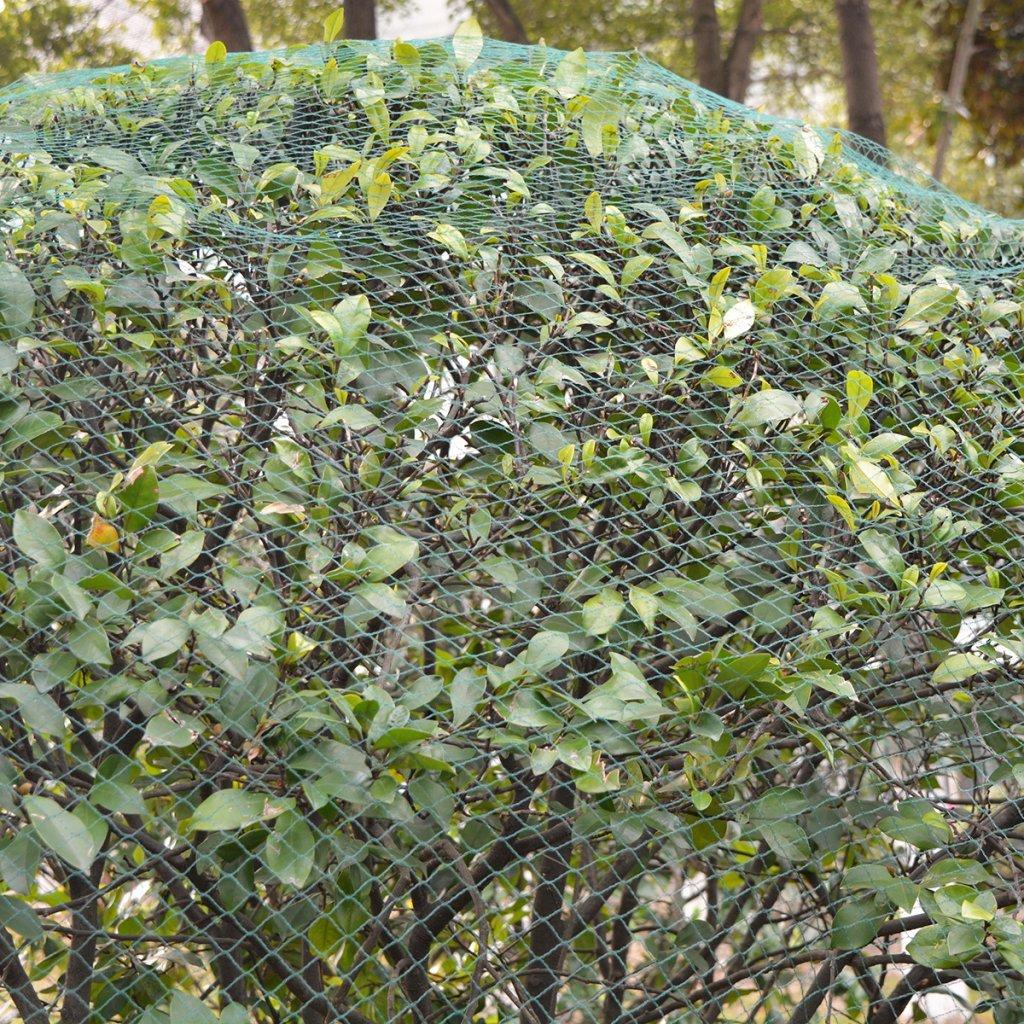 Festnight 2 Stk. PE Vogelschutznetze Vogelnetz 6 x 6 m als Teichnetz ...