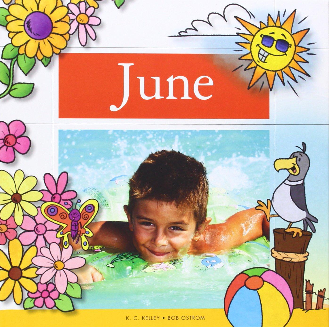Read Online June (Twelve Magic Months) ebook