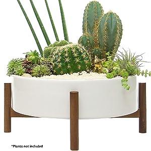 Mid Century Large Round Succulent Planter Bowl