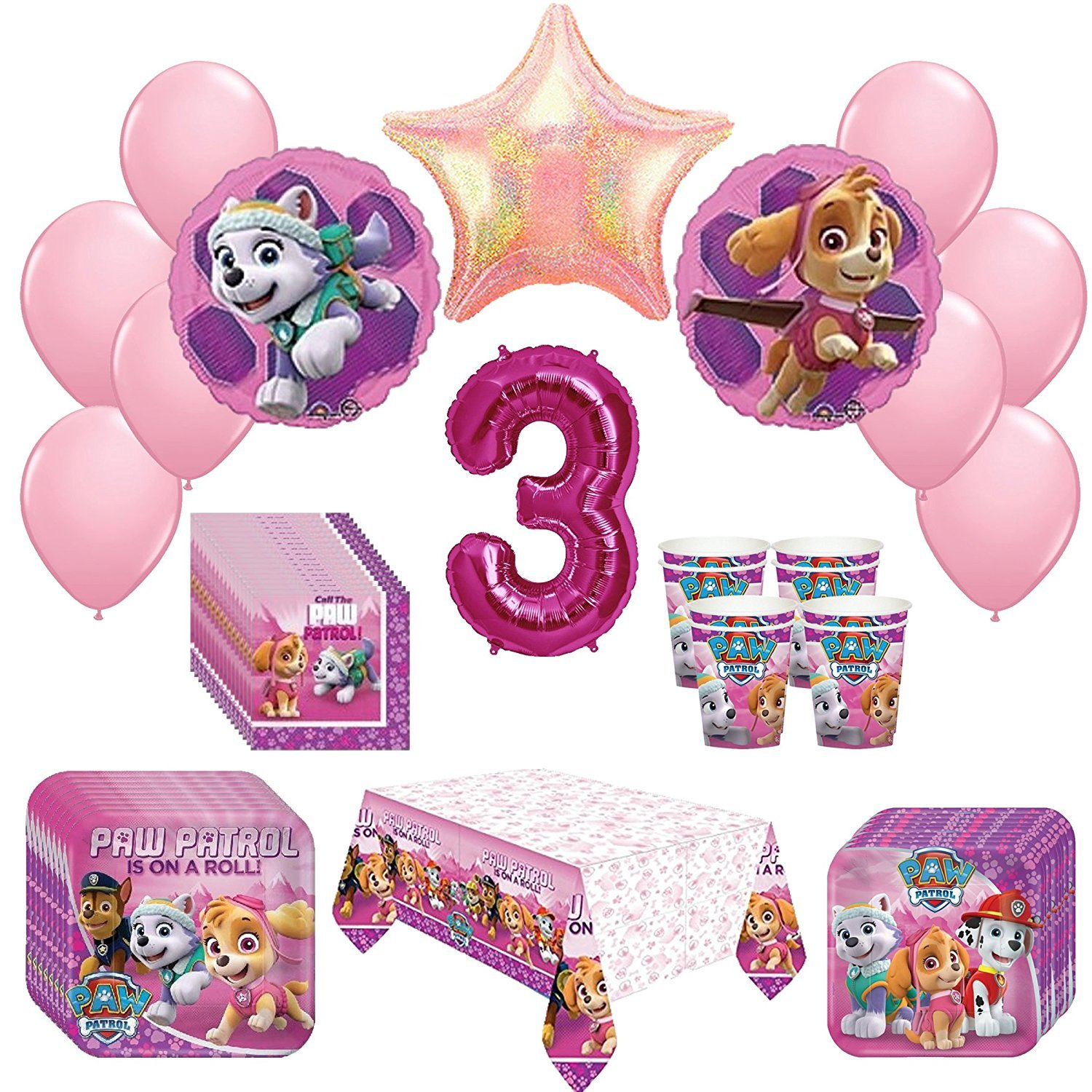 Girl Pups Paw Patrol Skye Everest 3rd Birthday Party Pack 52 Piece  Set by amscan