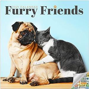 Furry Friends Calendar 2021 Bundle - Deluxe 2021 Dog and Cat Friends Wall Calendar with Over 100 Calendar Stickers