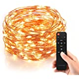 Homestarry HS-SL-010 Dimmable String Lights Pro, 240 LED's Copper Wire, with Wireless Handheld Remote Control, 12V Power Adapter, 40-Feet - Warm White