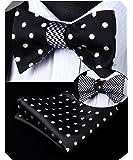 HISDERN Men's Fashion Double Sided Jacquard Self Bow Tie Set Dual-use Bowtie