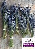 "Findlavender - Lavender Dried Premium Bundles - 130 - 150 Stems - 18"" - 22"" Long - Pack of 6 Bundles"