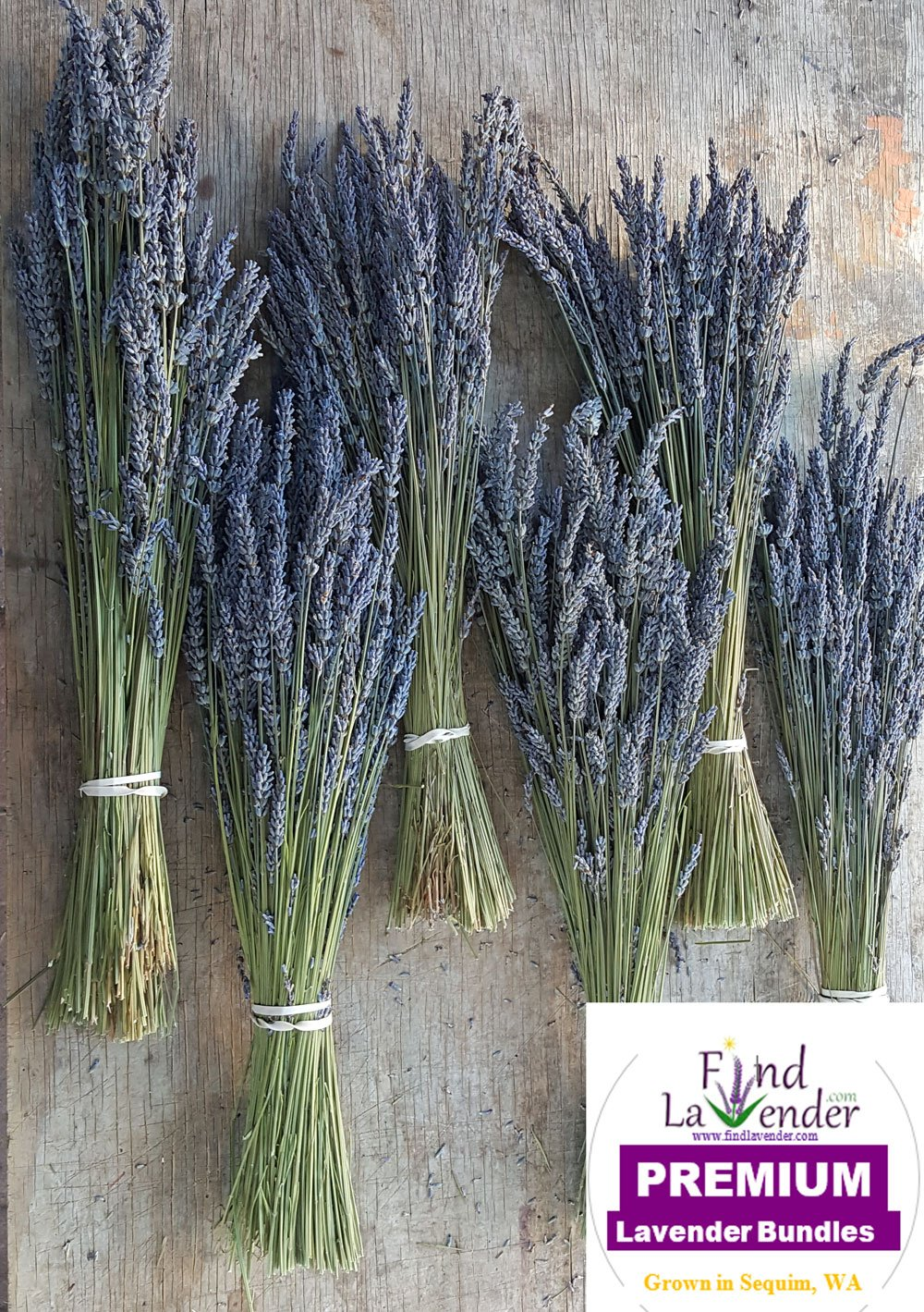 """Findlavender Lavender Dried Premium Bundles - 22 to 24"""" - 130 to 150 Stems - Can Be Used for Any Ocassion - Perfect for your wedding! - 6 Bundles"""