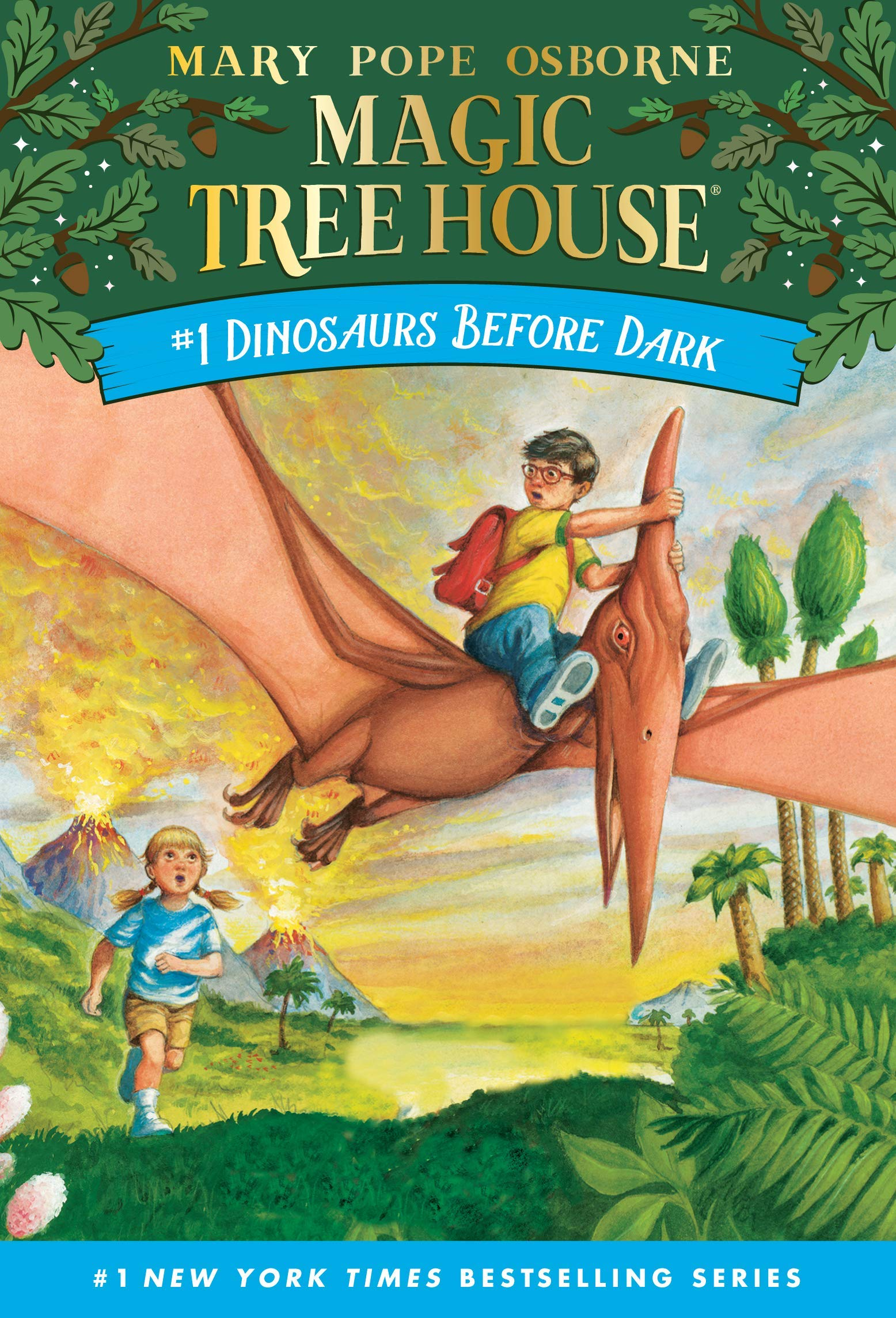 The Best Chapter Books for 1st Graders featured by top Seattle lifestyle blogger, Marcie in Mommyland: Magic Tree House