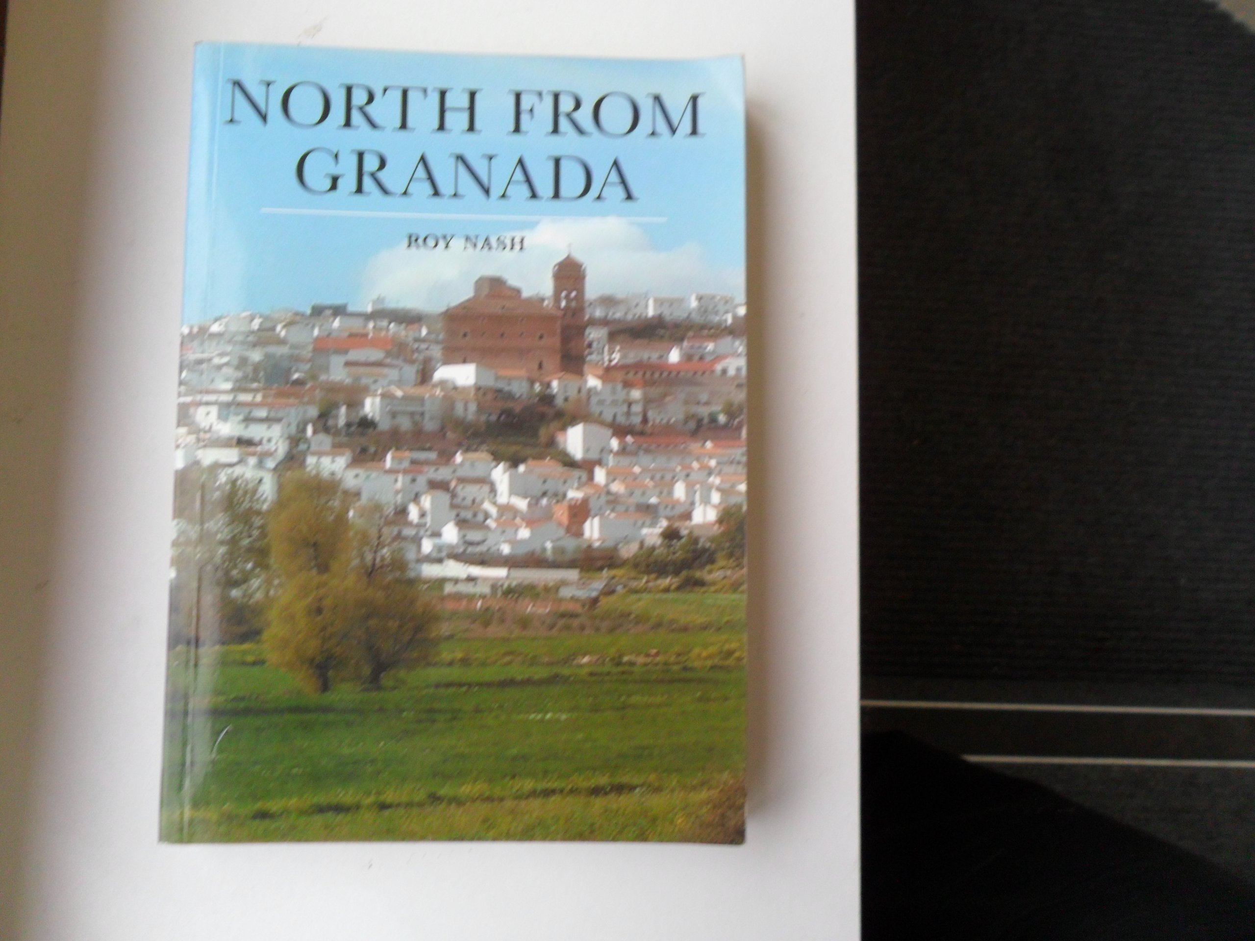 Download North from Granada: A Walking Tour from Granada to Toledo and Madrid in a Direct Line pdf