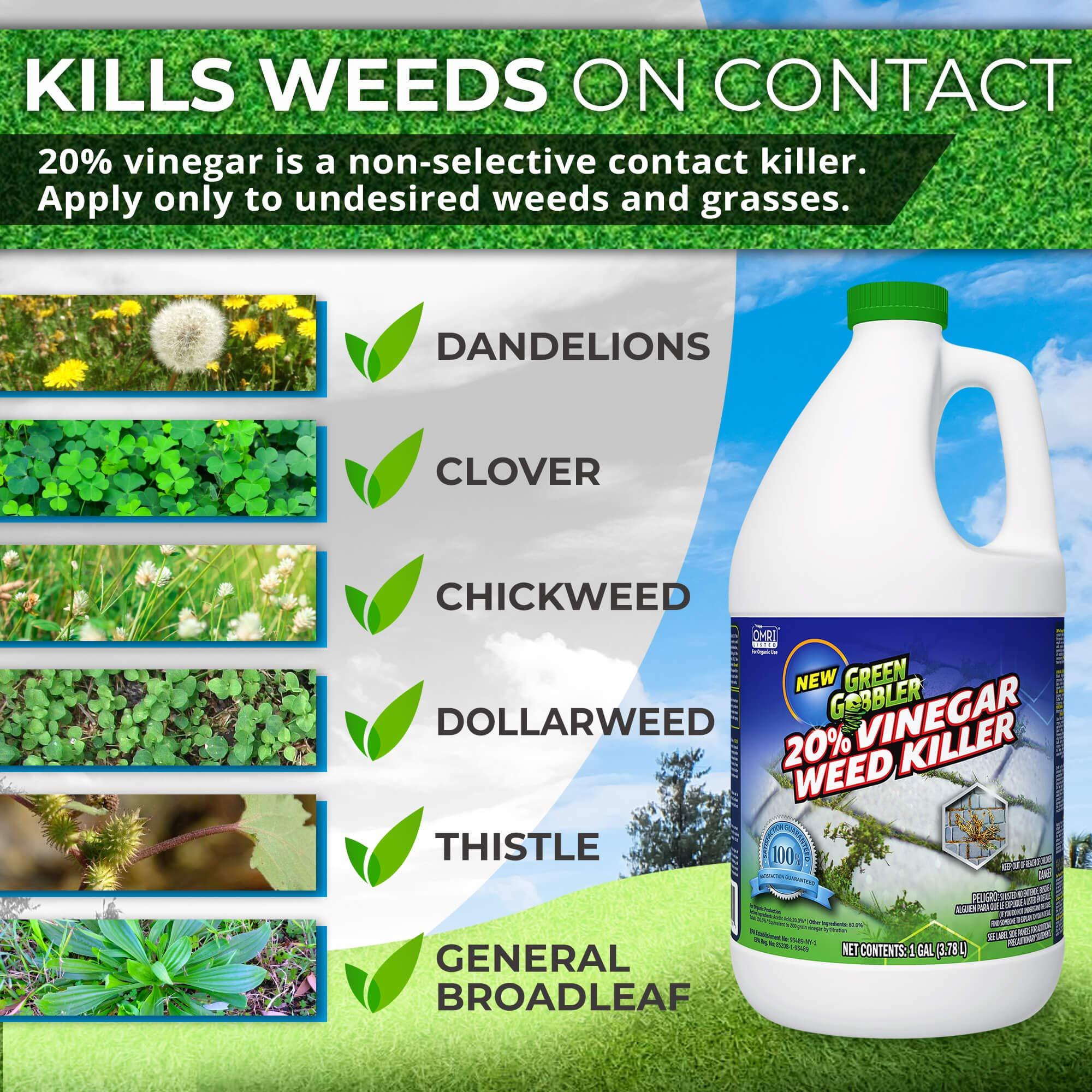 Green Gobbler 20% Horticultural Vinegar Weed Killer   Herbicide   Natural Weed Killer   Organic Weed Killer (5 Gallon Pail) by Green Gobbler (Image #3)