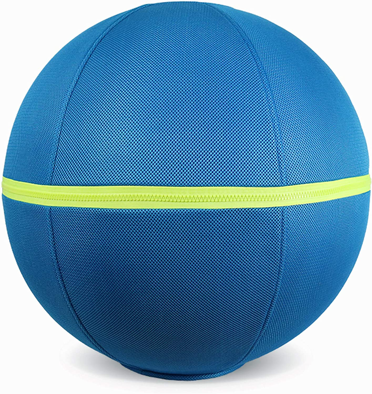 COOLDOT Bola de Yoga para Adultos Pelota Asiento Silla con Cubierta y Asa Incluye Pelota de Ejercicio y Bombín para Casa, Oficina, Pilates, Yoga