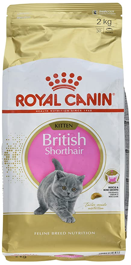 ROYAL CANIN - Comida para Gatitos - British Shorthair ...
