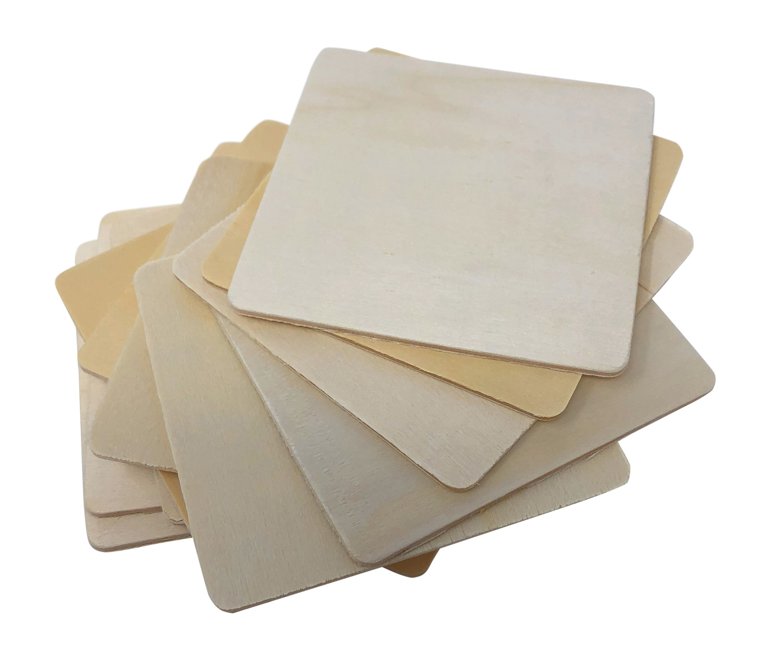 12 Piece Birch Wood Craft Unfinished Blank Coasters 4 x 4 for Craft Projects with Instruction Sheet by Nickanny's