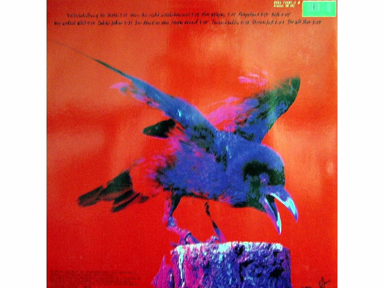 Wat Kost Vinyl : Brille vinyl lp amazon musik