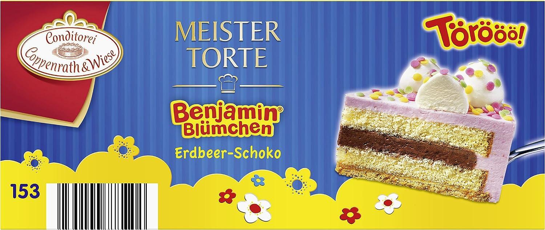 Coppenrath Wiese Benjamin Blumchen Erdbeer Schoko Sahne Torte 500
