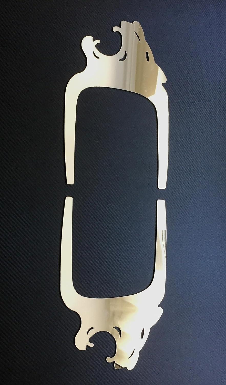 2 x Panel de la puerta decoración de acero inoxidable pulido León para Man TGA, TGL, TGS, TGX camiones: Amazon.es: Coche y moto