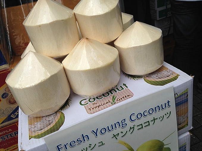 Amazon.co.jp: 新鮮 タイ産 ヤングココナッツ 6個 3度楽しめる ...