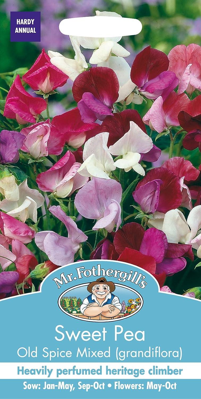 Mr Fothergills SWEET PEA OLD SPICE MIXED GRANDFLORA FLOWER SEEDS