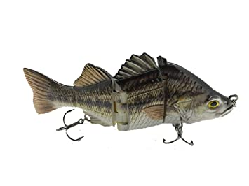Best Bass Pike Walleye Muskie Fishing Lures Amazing Swimbait with Vivid  Fish Swimming Action Bait