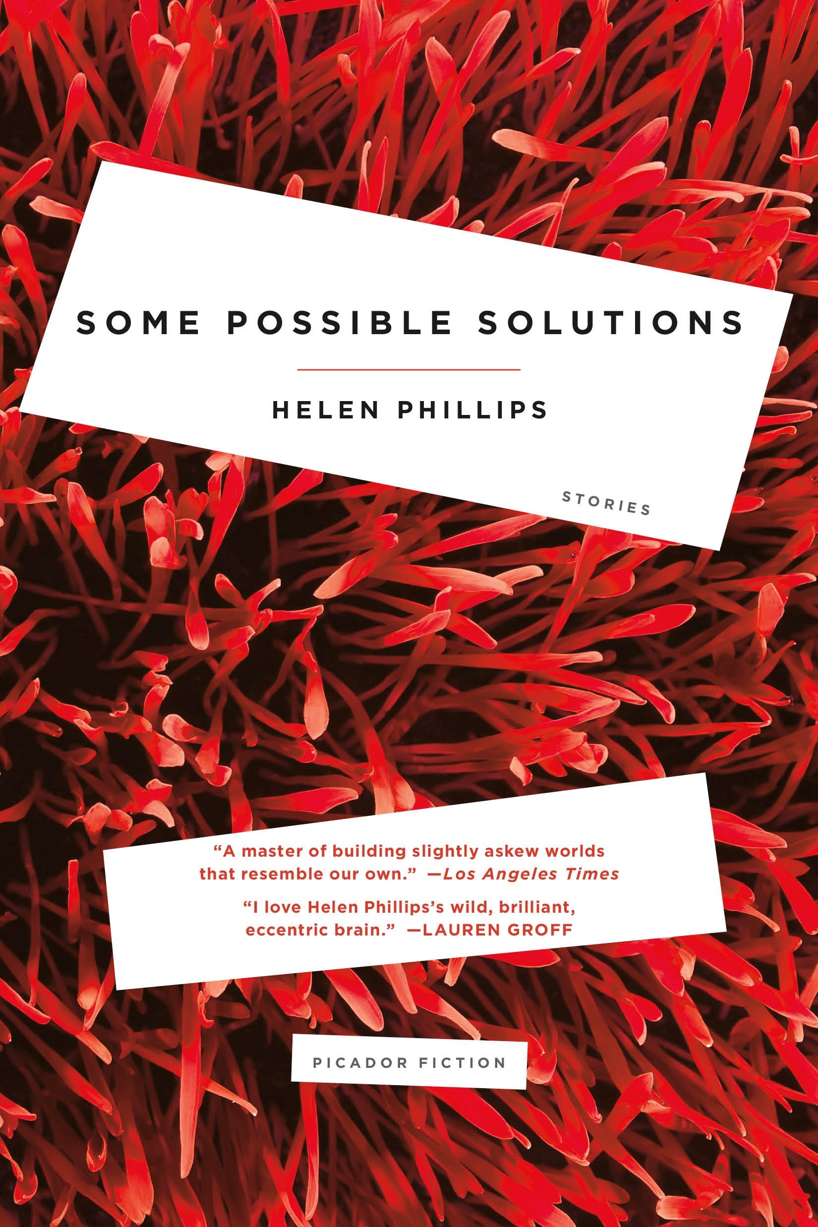 Some Possible Solutions: Stories ebook