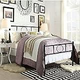 Aingoo Double Metal Platform Bed Frame with Strong Metal Slats, Black