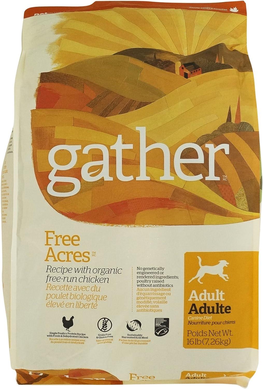 Petcurean Gather Free Acres Recipe Dry Dog Food - 16 lb. Bag