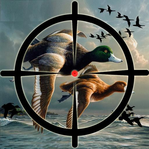 Duck Hunting Pro Challenge-Bird Shooting Game 3D