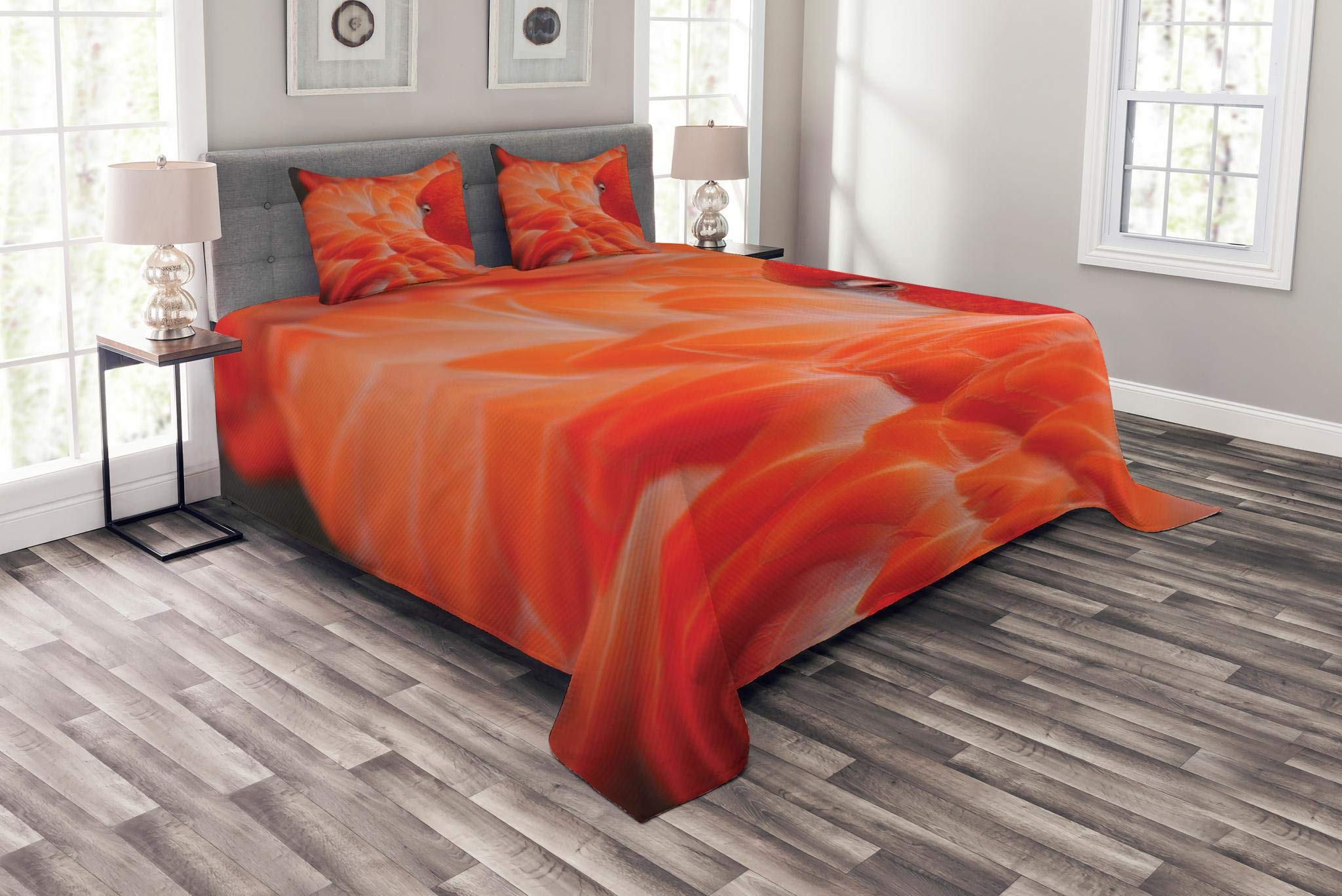 Lunarable Flamingo Bedspread Set King Size, Flamingo Feathers Fuzzy Waterbird Graceful Animal Closeup Wildlife Scenic Picture, Decorative Quilted 3 Piece Coverlet Set with 2 Pillow Shams, Orange