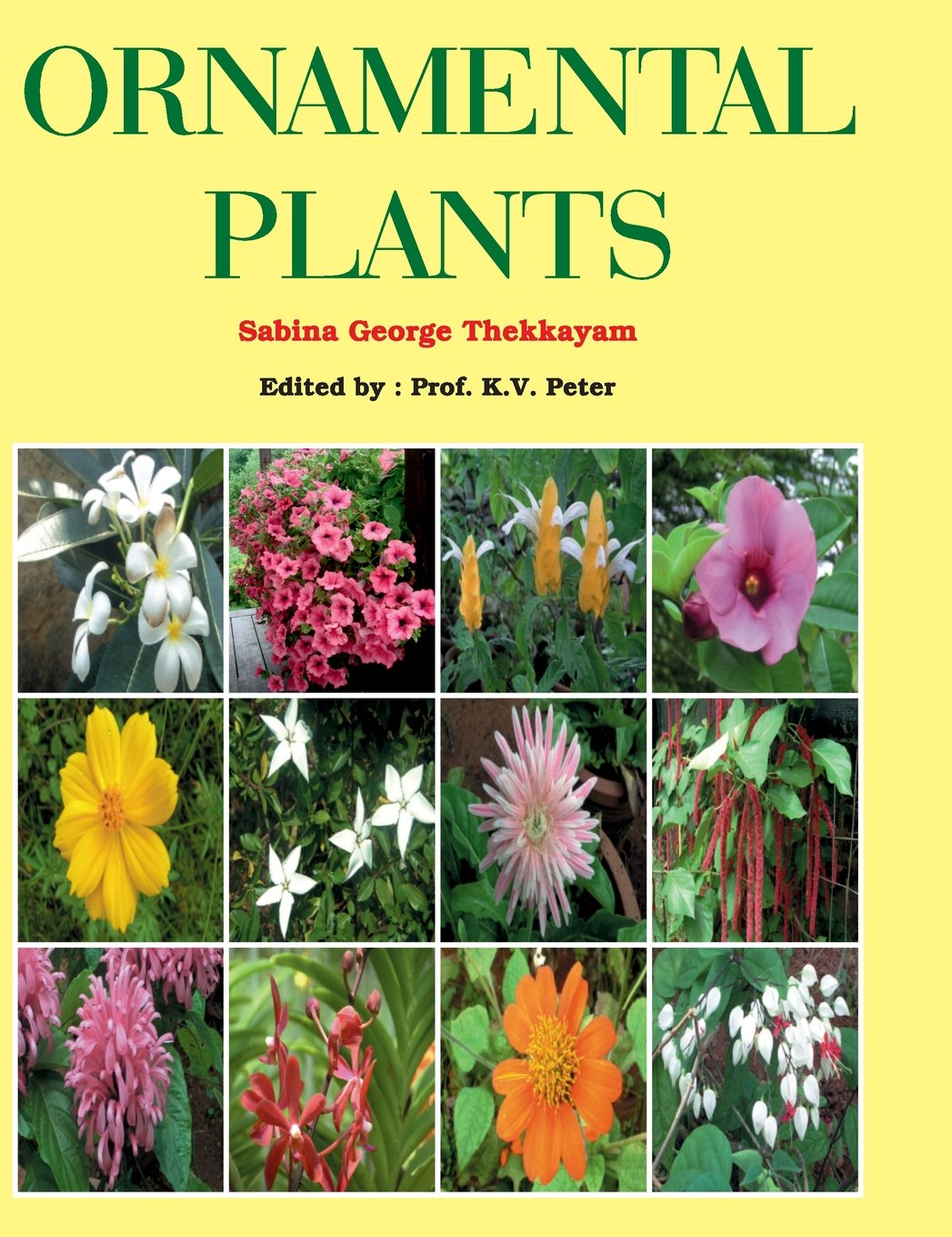 Ornamental plants with names images for Ornamental garden plants