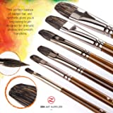 Professional Oil Paint Brushes