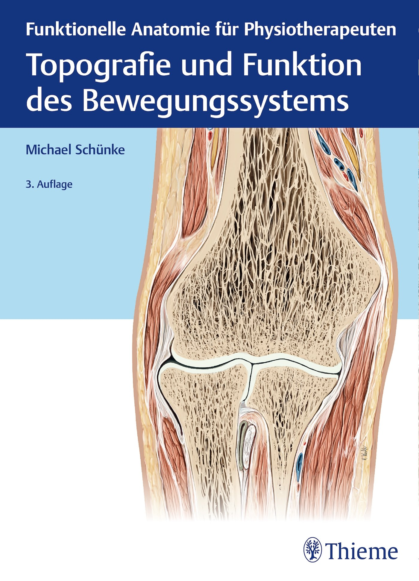 Topografie und Funktion des Bewegungssystems: Funktionelle Anatomie ...