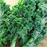 "Package of 300 Seeds, Kale ""Vates Blue Scotch Curled"" (Brassica oleracea) Non-GMO Seeds By Seed Needs"