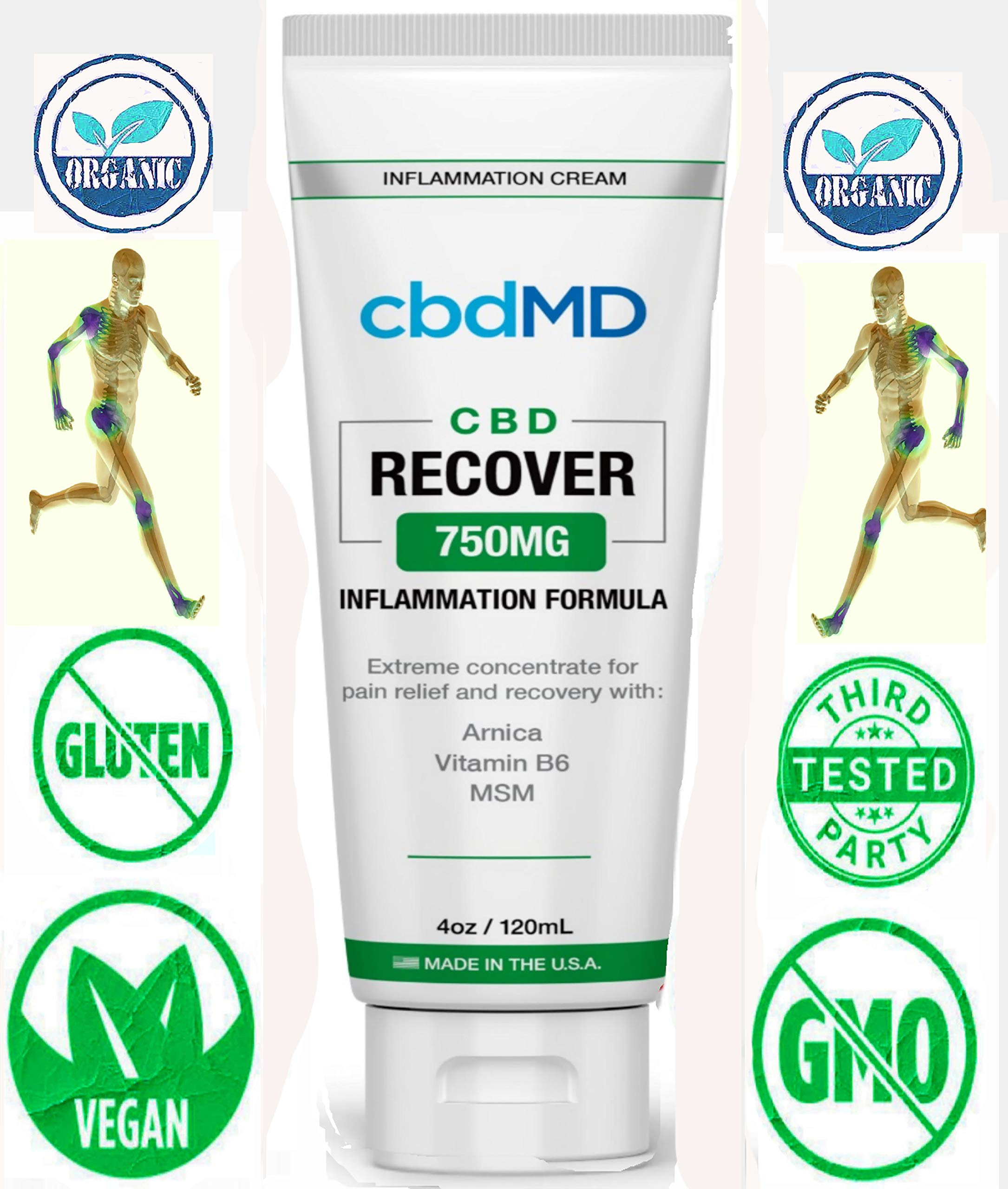750mg Organic Recovery Squeeze Gel Cream Arnica Msm B6 Pain Stress Relief Topical Lotion Immune Skin Support U.S. Grown Hemp Hydration Omegas Amino Acids by MD Organics
